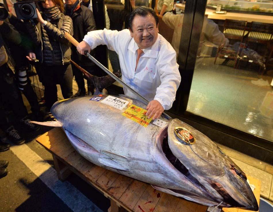 日本大坂海鲜市场视频【相关词_ 日本大阪海鲜市场】